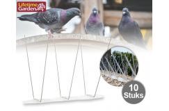 Set van 10 Vogelpinnen